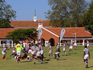 Cordwalles Rugby